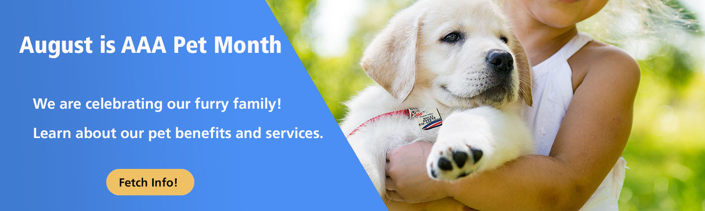 Pet Month Banner